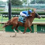 Not Much Separates Top Chilukki Stakes Contenders
