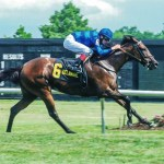 Replay – Trickle In – The Christiana Stakes – Delaware Park