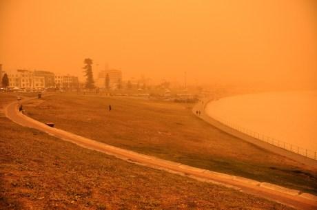 Bondi Beach Park