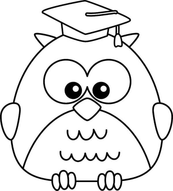 Раскраски сова, Раскраска Мудрая сова птицы.