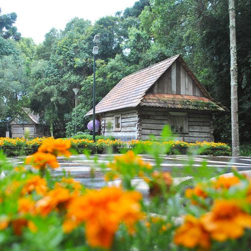 Visita ao Bosque do Papa João Paulo II em Curitiba