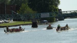 Dragon boats on the Sydenham. June 2015 (Photo by Chris Taylor)