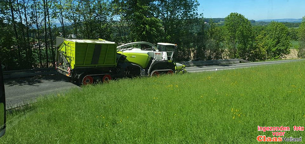 Claas Jaguar 960 Terra Trac im Action.