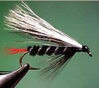 skunkfly