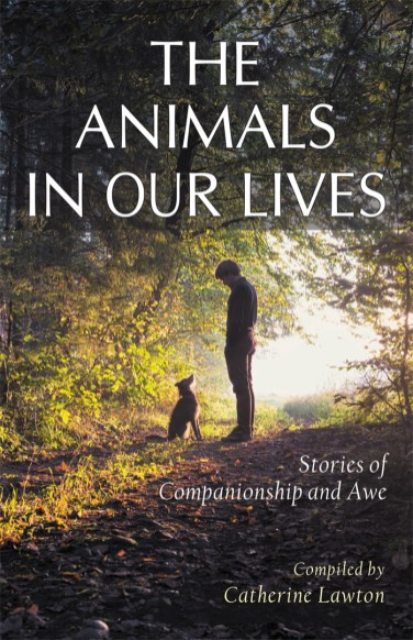 The Animals In Our Lives