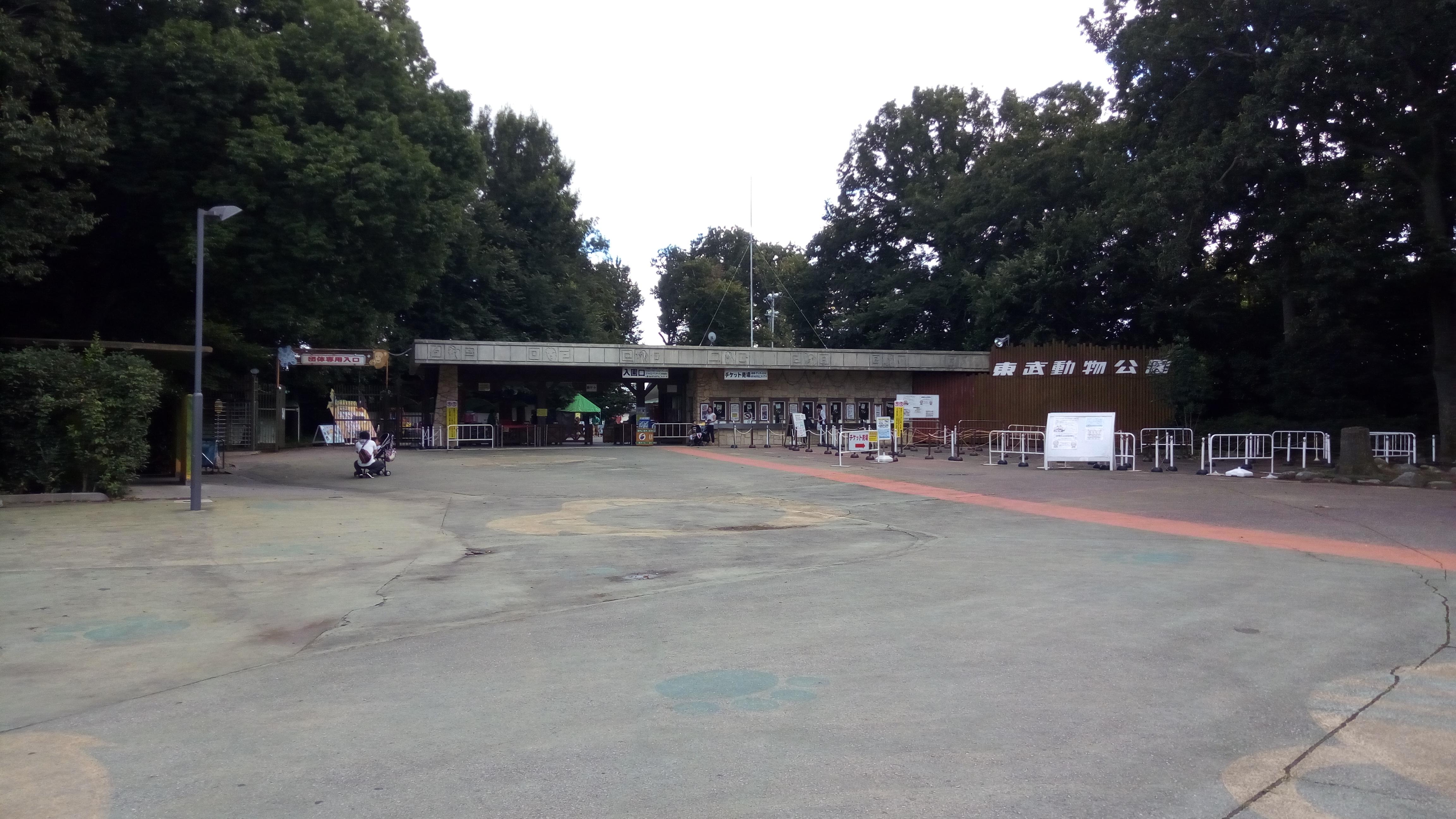 ライオンにエサやりができました 東武動物公園