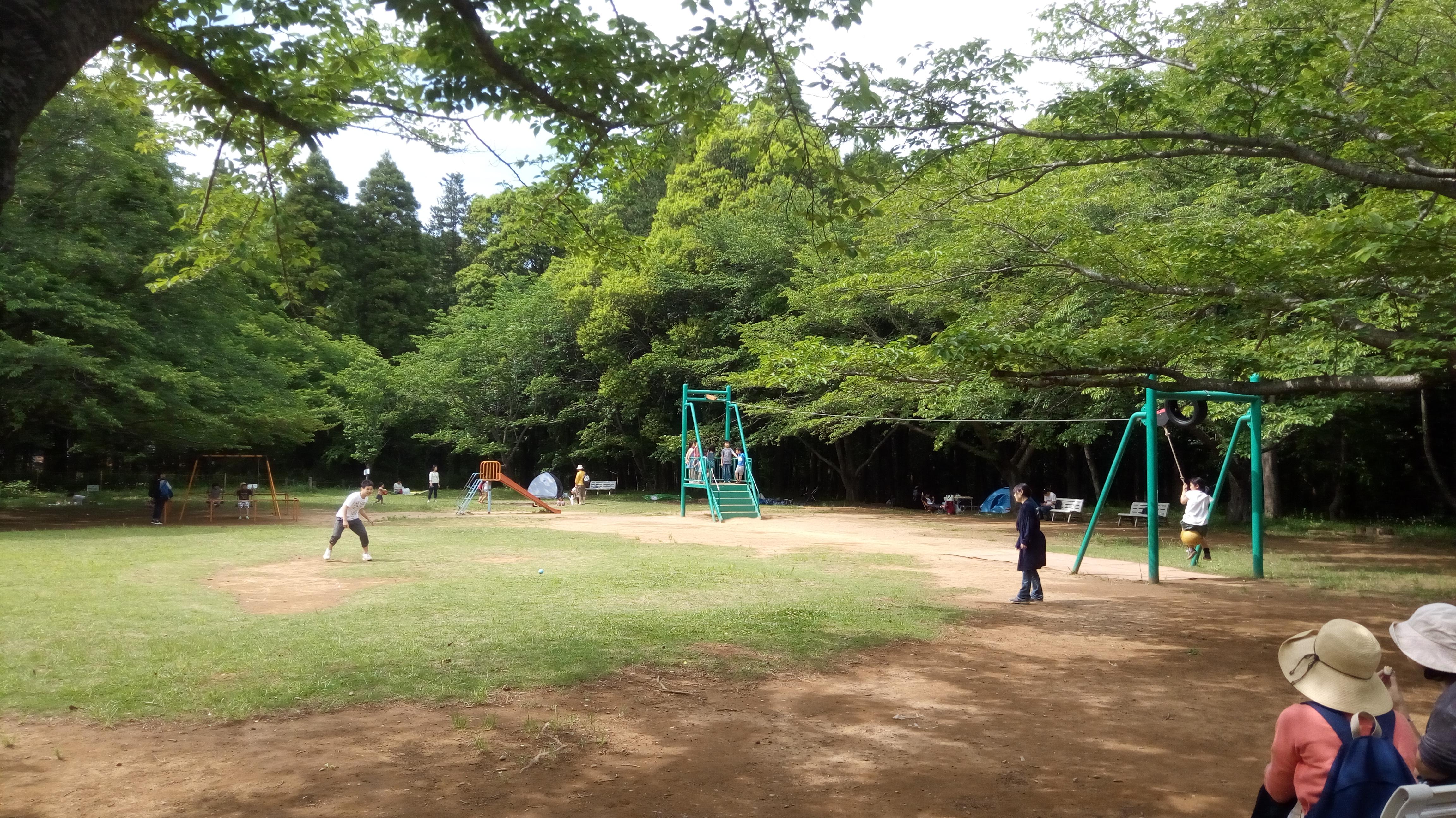 林の中のアスレチック~龍ヶ崎森林公園