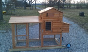 photo of our chicken coop