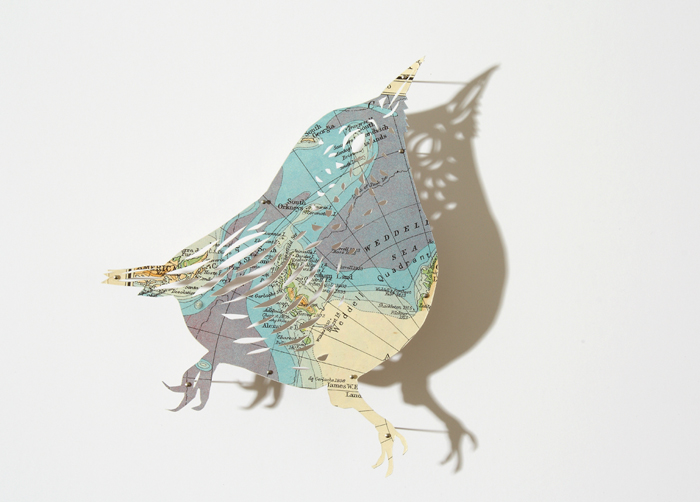 clairebrewster_papercut_bluebirdy