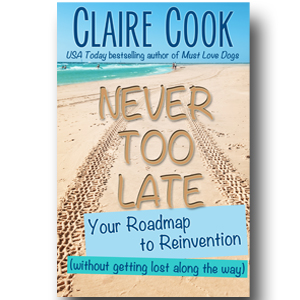 Never Too Late: Your Roadmap to Reinvention