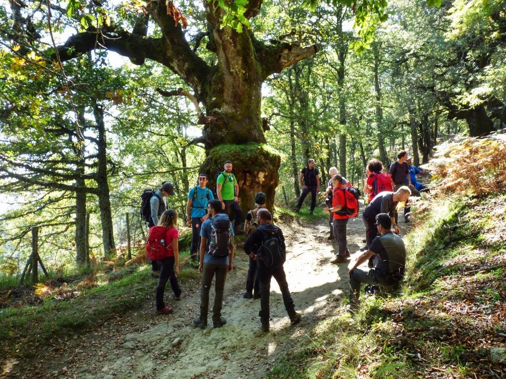 escursionisti al Bosco di Malabotta