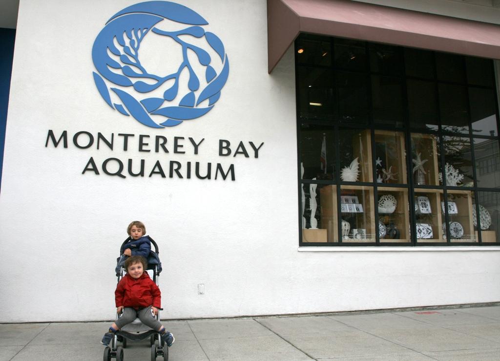bambini davanti l'ingresso dell'acquario di monterey in california