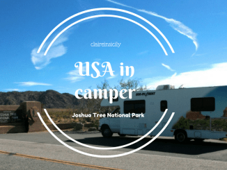 stati uniti in camper-ingresso joshua tree national park