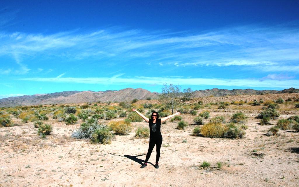donna che alza le braccia al Joshua Tree negli Stati Uniti