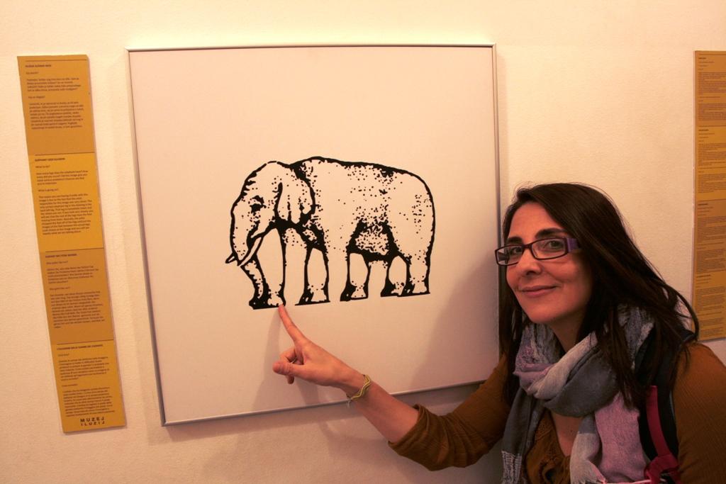 Immagine di un elefante al museo delle Illusioni Lubiana