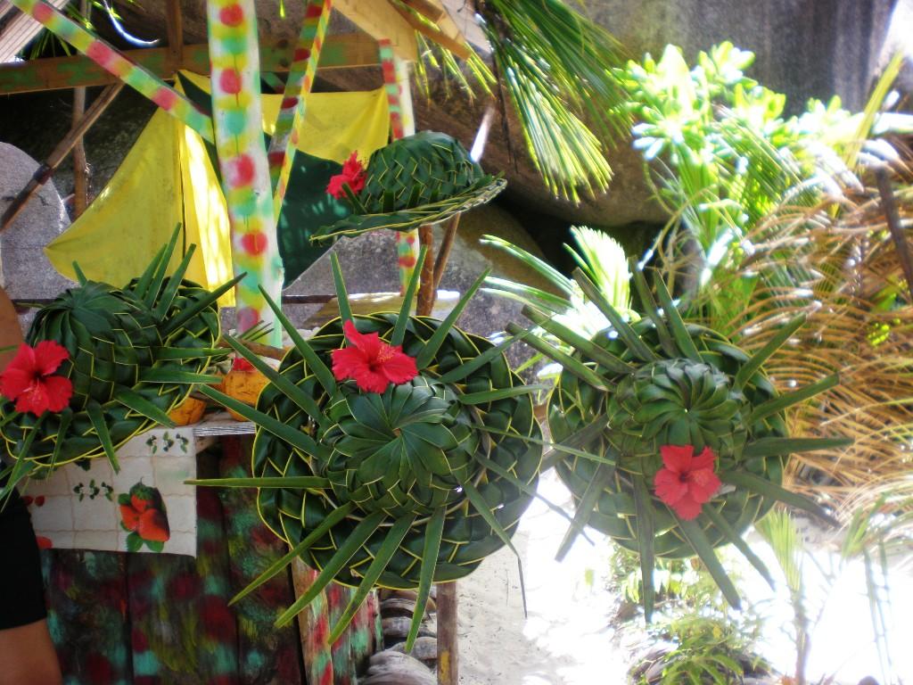 Cappelli realizzati con le palme di cocco