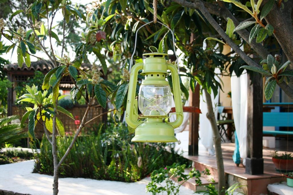 una lampada appesa a un albero in una casa vacanze a Agrigento