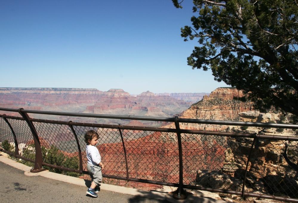 un bambino che guarda il Grand Canyon