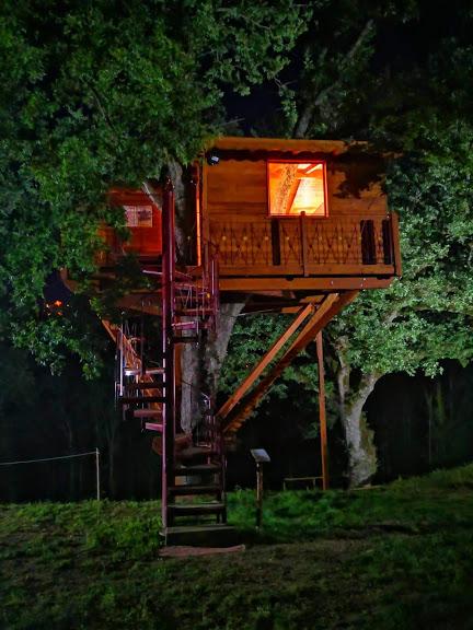 casa sull'albero di sera