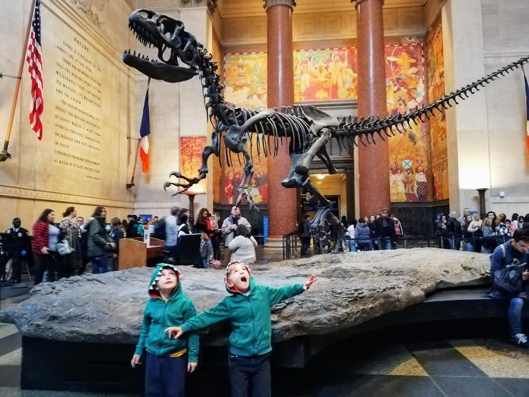 bambini al museo di storia naturale di new york