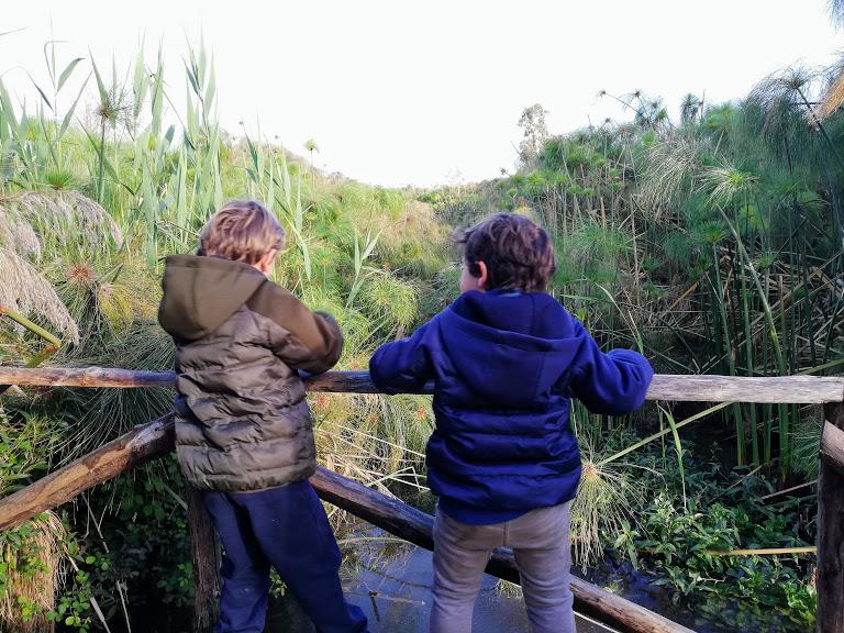due bambini che osservano il fiume Ciane nei dintorni di Siracusa
