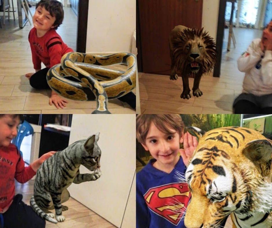 alcuni animali in 3D con google