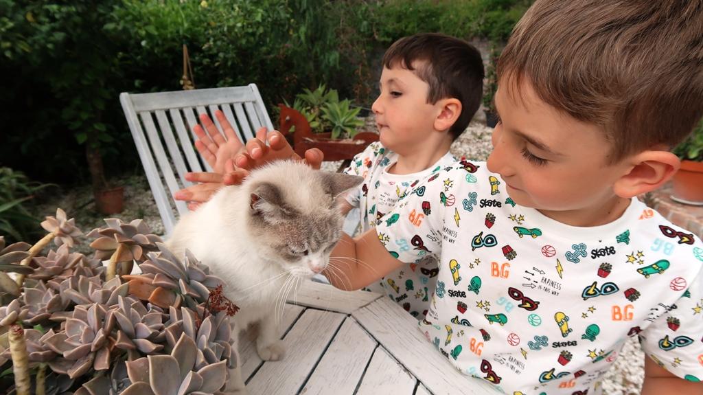 un gatto e dei bambini in un bb nei pressi di Catania