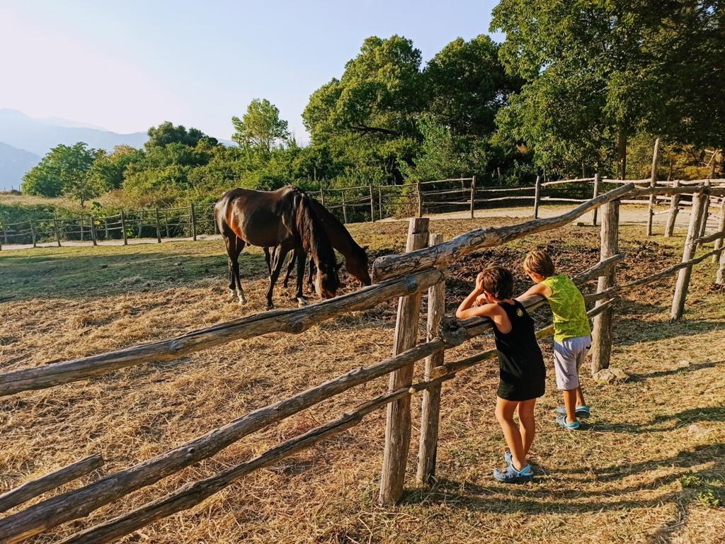 bambini in fattoria sui Nebrodi
