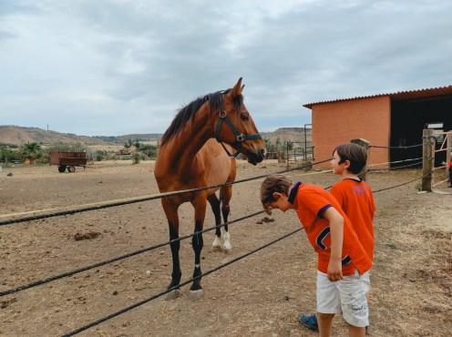 bambini in fattoria con cavalli in Sicilia