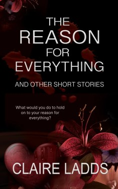 The Reason for Everything by Claire Ladds ebook