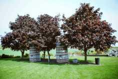 Route des vins Etats Unis (15)