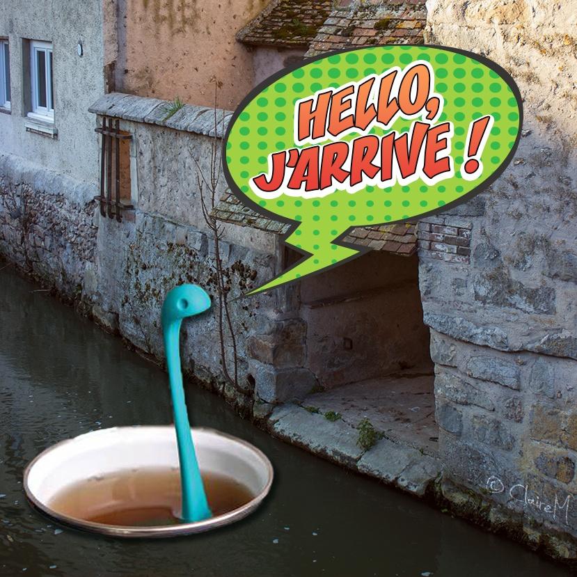 """La tasse et l'infuseur """"Nessie"""" se promène dans le Roulebois, rivière à Nogent-le-Roi"""