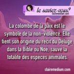 Le saviez-vous ? La colombe symbole de la paix