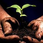 Comment nourrir notre planète en 2050 ?