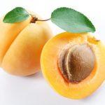 Huile essentielle de noyau d'abricot