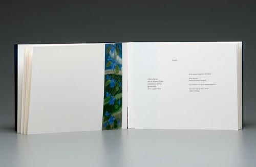Claire Owen: Bookworks/Turtle Island Press: SAGE