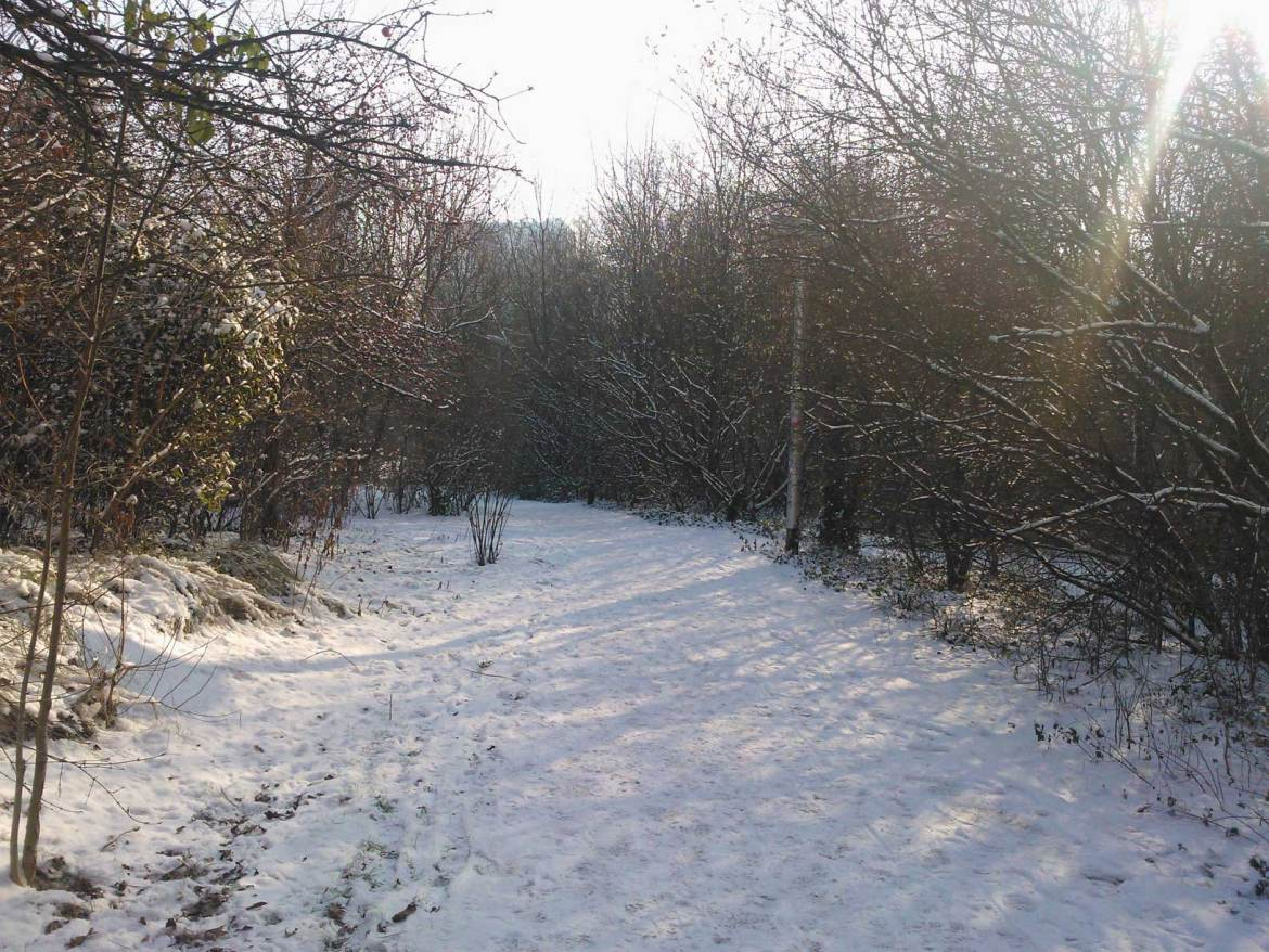 il neige a lille (4)