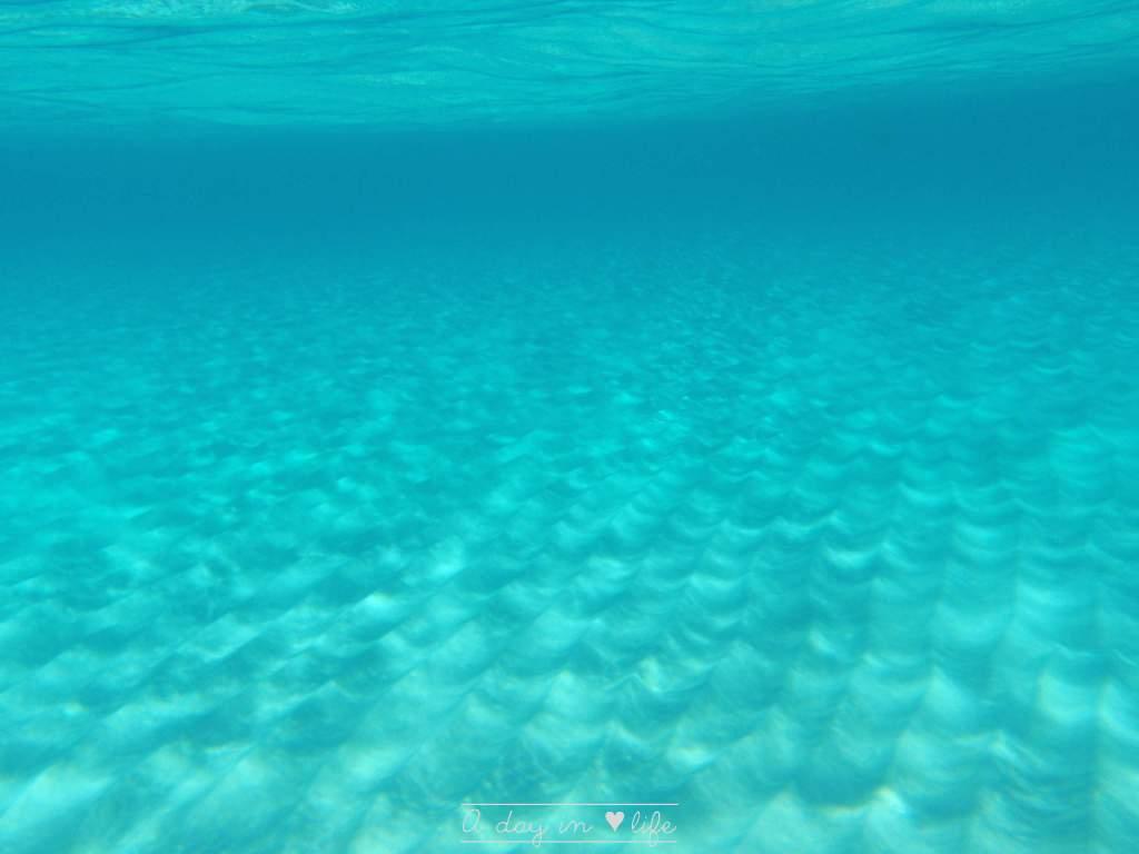 Comino, une île magique à Malte fonds marins - plongée sous-marine