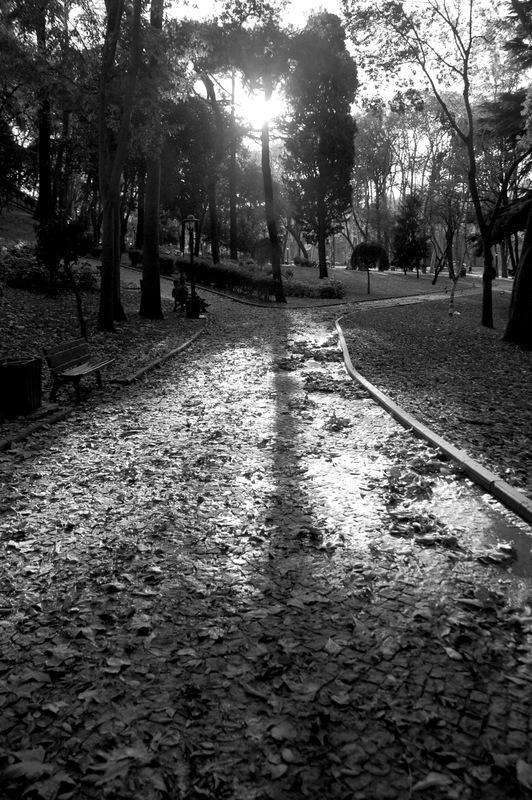 glhanepark