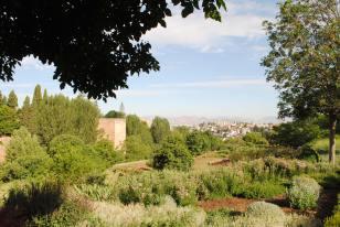 andalousie alhambra espagne grenade (8)