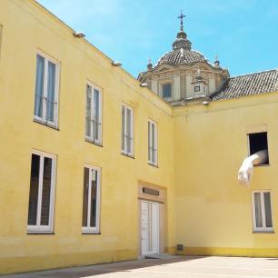 séville caac art contemporain andalousie art (5)