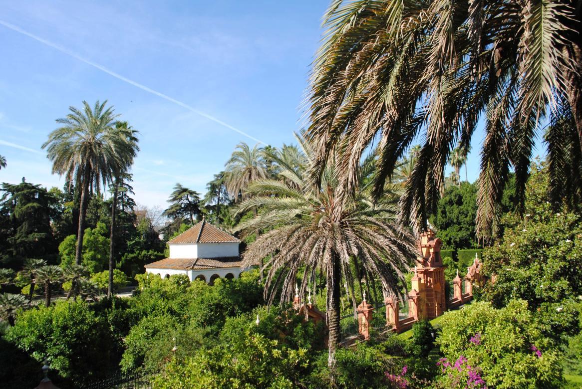 seville alcazar espagne (12)