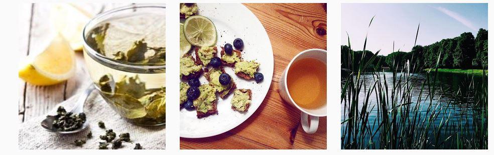 teasire-the-detox-vegan-bio-instagram