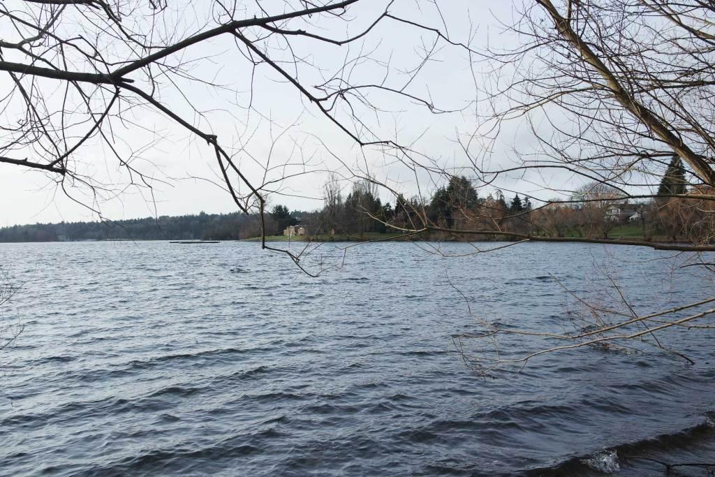 Découverte de Green Lake - Seattle - Etats Unis