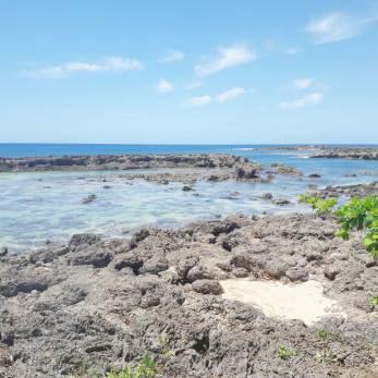 Oahu-Hawai-quoi-faire-(383)