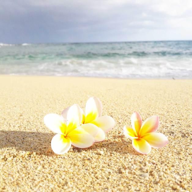 kauai-hawaii-clairesblog