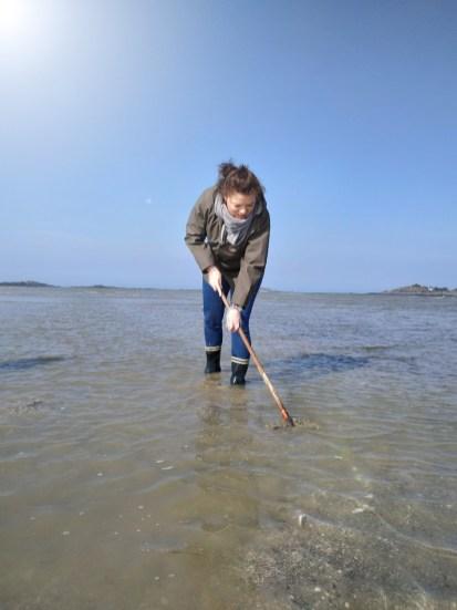 pêcher en bretagne pêche à pieds lancieux