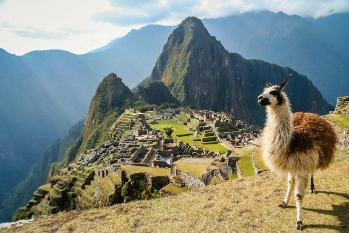 14 day Taste of Machu Picchu and Galapagos 14 day Taste of Machu Picchu and Galapagos tour including return international flights, accommodation, breakfast daily, expert guides, guided tours, in-depth sightseeing and more. From$5,999