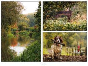 Walks in Sussex