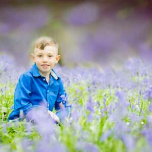 Bluebell woods photography